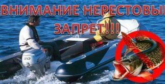 Запрет на лов рыбы
