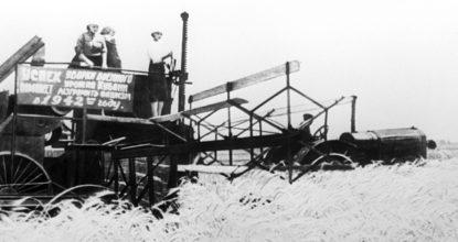 Уборка хлеба во время войны