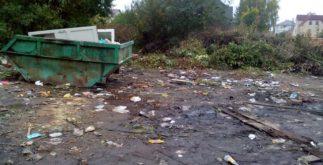 Егерская слобода - мусор