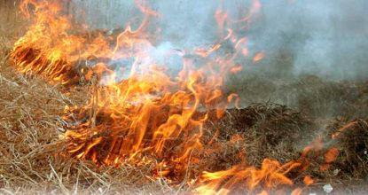 Сжигание травы и листвы