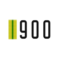 900 дней