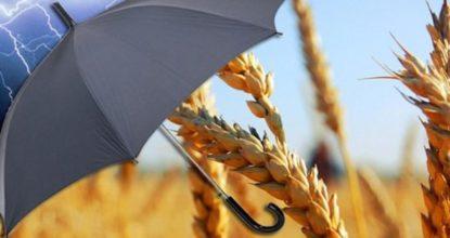 Сельхозстрахование
