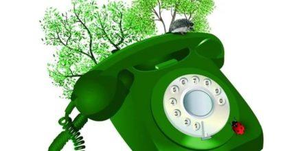 Зелёная телефонная линия