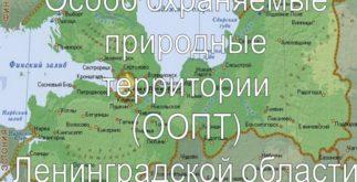 Эко-карта Ленобласти