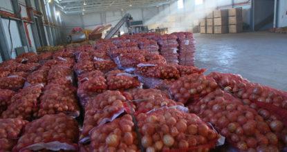 Склад сельхозпродукции