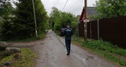 v-gatchinskom-rayone-prodolzhayutsya-profilakticheskie-proverki-v-sadovodstvah_1598941747749254565__2000x2000