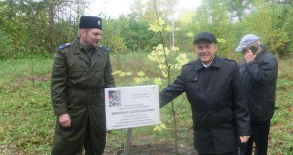 Борисенко сажает дерево